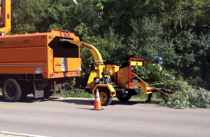 Commercial Tree Services-Coconut Creek FL Tree Trimming and Stump Grinding Services-We Offer Tree Trimming Services, Tree Removal, Tree Pruning, Tree Cutting, Residential and Commercial Tree Trimming Services, Storm Damage, Emergency Tree Removal, Land Clearing, Tree Companies, Tree Care Service, Stump Grinding, and we're the Best Tree Trimming Company Near You Guaranteed!
